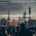 MARIPOSA BUSINESS SOLUTIONS – Consultancy